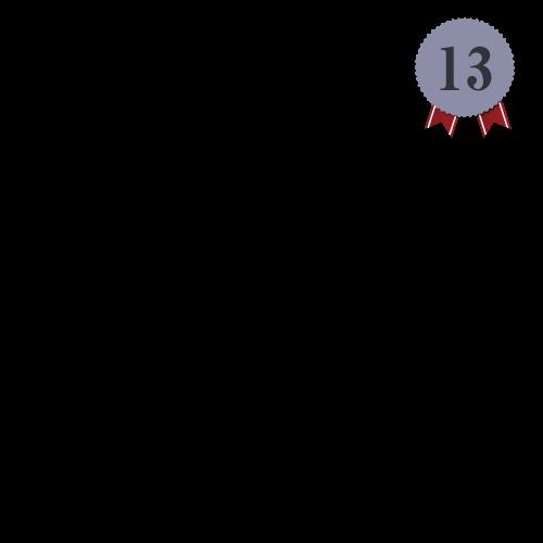 ランキング13